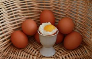 Huevos de granja