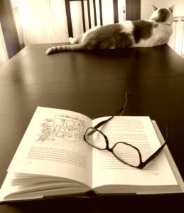 Rincon de lectura casa